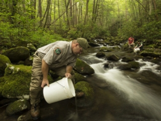 Southern Appalachia brook trout are cherished as a cultural emblem of the rugged and lush mountain forests including the Cherokee National Forest and are an important signal of the highest quality drinking water. Travis Scott, a fish biologist with the Tennessee Wildlife Resources Agency, releases young brook trout into one of the forest's headwater streams. (Copyright photo courtesy Freshwaters Illustrated/Dave Herasimtschuk)