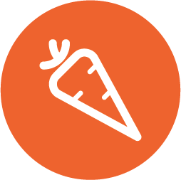 Carrots fruit icon