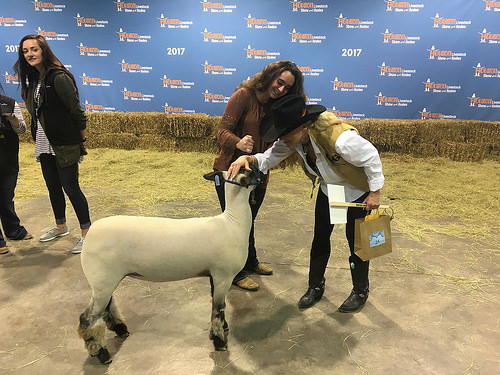 Hanna Lisenbe during the 2017 Houston Livestock Show and Rodeo, at the sale. Photo credit: Hanna Lisenbe, with permission