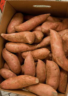 With help from SARE, tobacco producers in Kentucky and Mississippi are growing sweet potatoes for local and regional sale.
