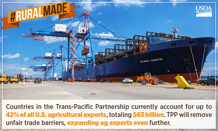 The Trans-Pacific Partnership (TPP)