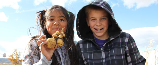 These students at Dayton Elementary in Dayton, Nevada harvest potatoes from their school's garden