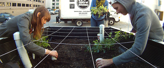 Staff from D.C. Central Kitchen and The Campus Kitchens Project work on the Truck Farm in Washington, D.C. The truck will travel schools and community sites teaching children about healthy eating and where their food comes from through the garden display in its truck bed.