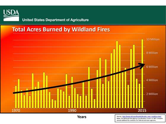 Fire Trends graphic