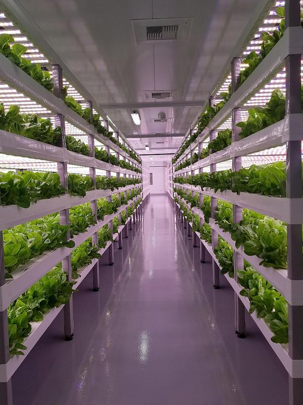 Vertical Farming For The Future Usda