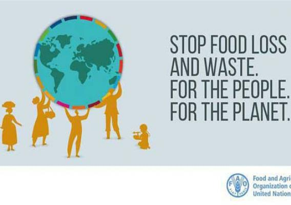 Food and Agriculture Organization of the United Nations Food Loss and Waste graphic
