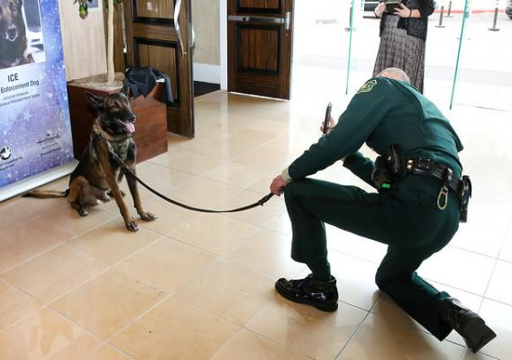 Ice with his handler Patrol Capt. Christopher Magallon during an event