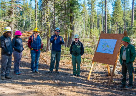 North Yuba Forest Partnership