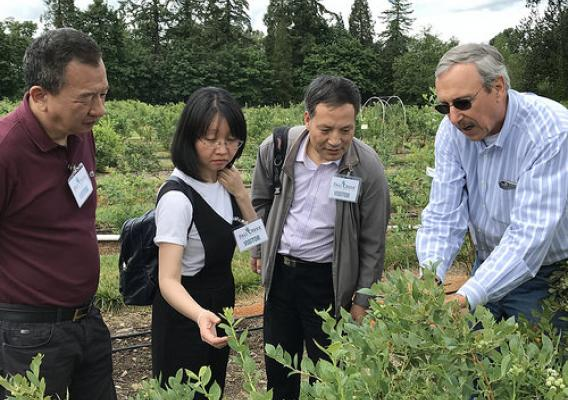 Dave Brazelton, President of Fall Creek Farm and Nursery (right), talking with representatives from China's State Forestry Administration about plant variety protection