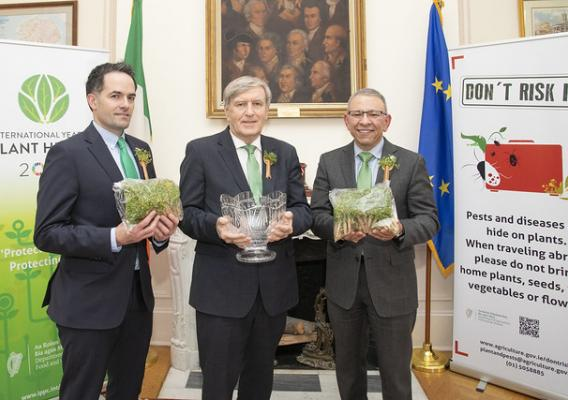 Irish Embassy Agriculture Counsellor Finbar Brown, Irish Ambassador to the United States Daniel Mulhall, and USDA Deputy Administrator Osama El-Lissy celebrate the arrival of Ireland's iconic shamrock plants