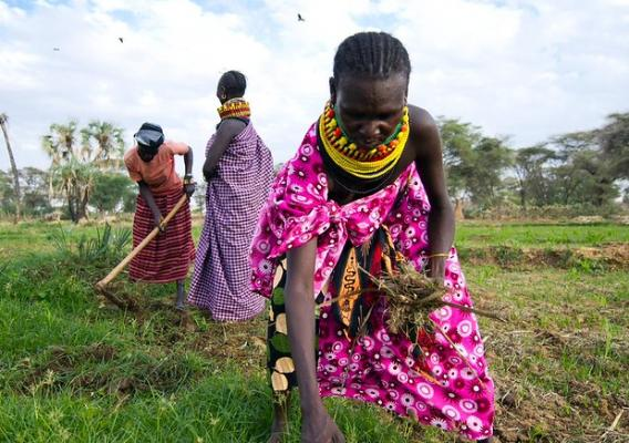 Woman farmers working in the fields in Kenya