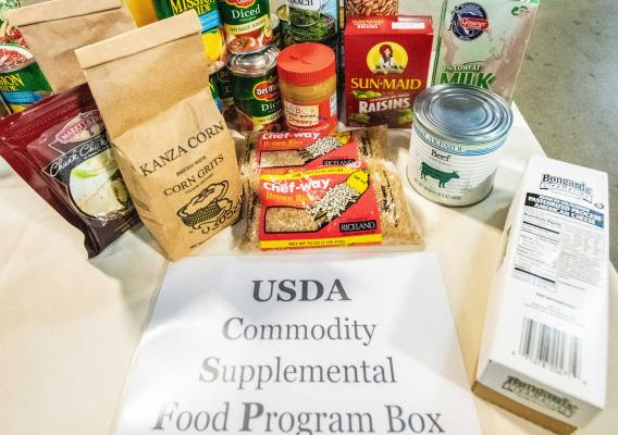 USDA Commodity Supplemental Food Program Box items