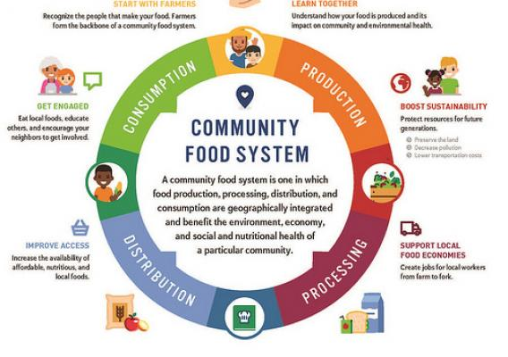Community Food System infographic