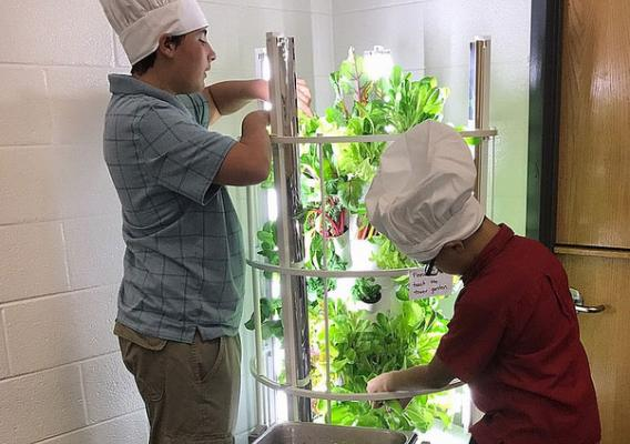 Students at Fred Lynn Middle School tending to hydroponically-grown lettuce