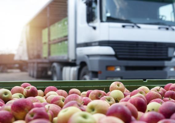 Truck with containers of apples and tray of apples in front of the truck