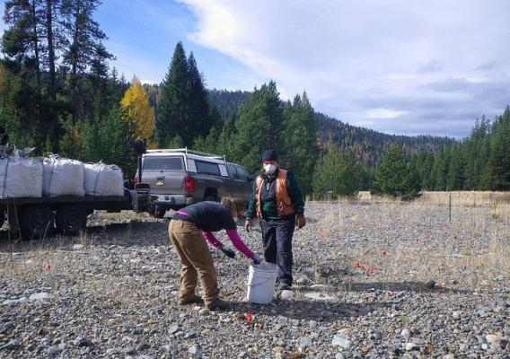 Forest Service researchers Sierra Larson and Joanne Tirocke apply biochar on an abandoned gold mine dredge site