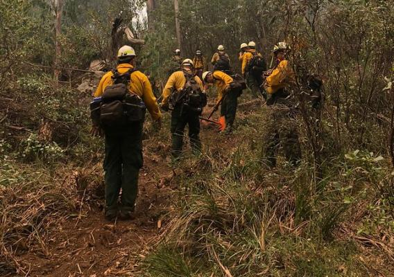 A Hot Shot crew from the Angeles National Forest working to aid in the Ovens 41 fire