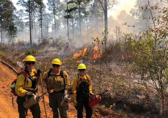 Women in Prescribed Fire Training Exchange participants