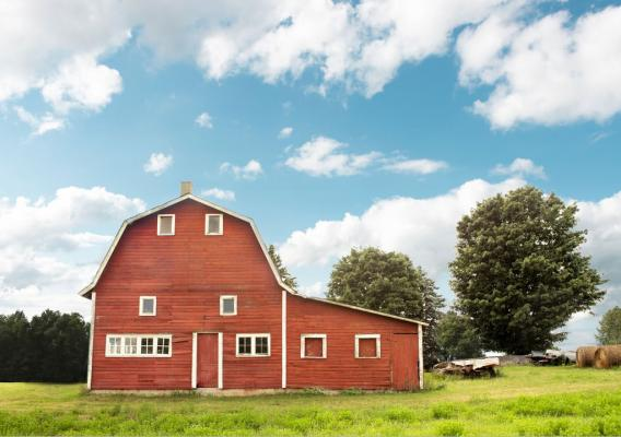 A barn with green grass and blue skies