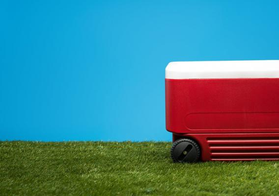 Grass lawn with a red ice chest