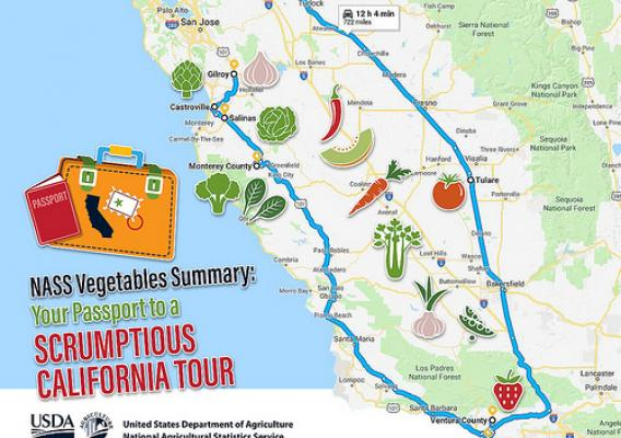NASS Vegetables Summary: Your Passport to a Scrumptious California Tour graphic