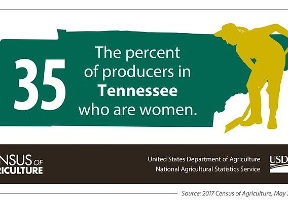 Census of Ag showing women producers in Tennessee graphic
