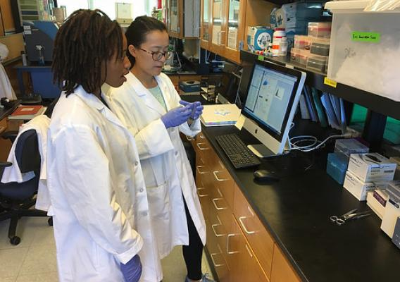 Oklahoma State University students Olivia Hawkins, left, and Lei Wu work on a project to study the health benefits of whole eggs in improving insulin resistance