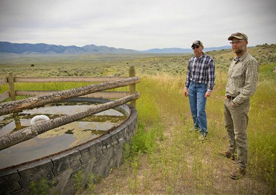 A conservation easement on a ranch in Montana