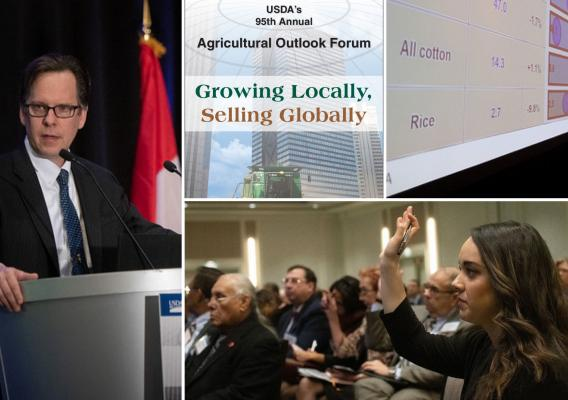 A collage of the USDA Ag Outlook Forum