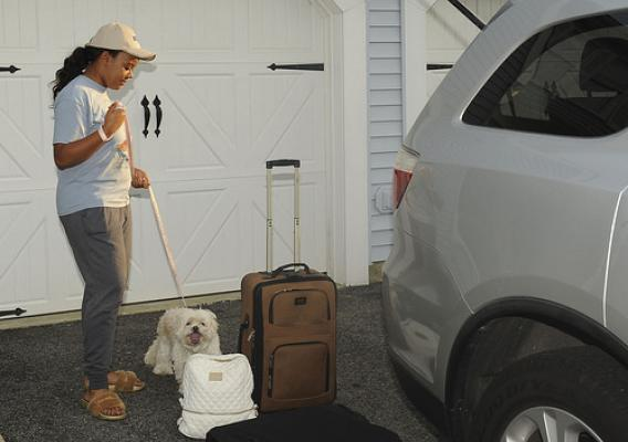 A person with a dog in front of suitcases near a SUV