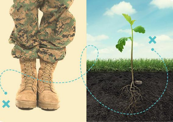 A graphic of a soldier's boots and a plant side-by-side