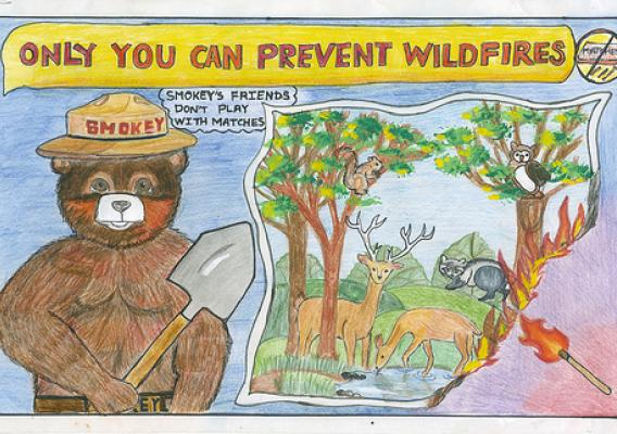 On Mary 27, Vaibhavi Patankar of Woodland Hills, Calif., was named the top winner in the 2011 Smokey Bear & Woodsy Owl Poster Contest.