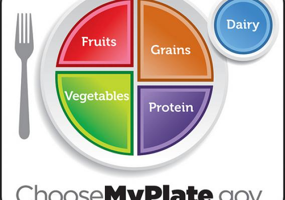 We want to see where and when you think about healthy eating. Join us in Take the Plate.  Print MyPlate or display on a mobile device and snap a photograph to show how and where you choose the best foods to put on your plates when building a healthy meal.