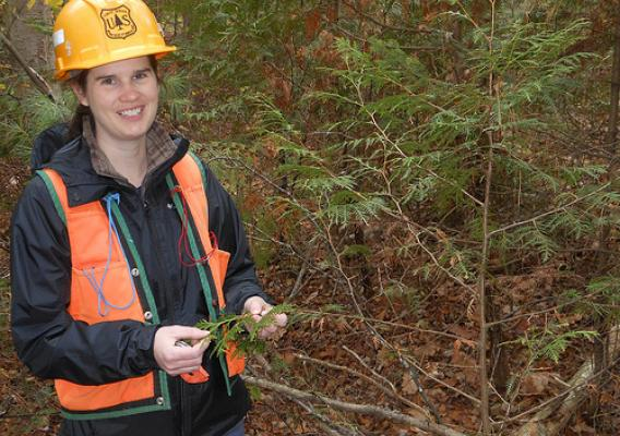Laura Kenefic is a research forester with the Forest Service's Northern Research Station, where she studies issues related to sustainable forest management. (Courtesy Liam Kenefic)
