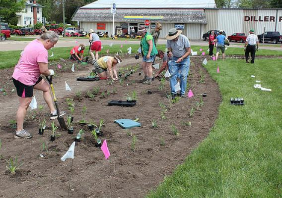 The volunteers worked four hours to get the 710 plants in the ground. NRCS photo.