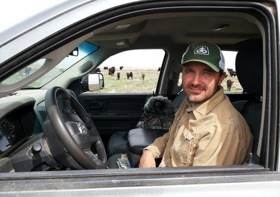Jeremiah Liebl in his truck with cattle in the background