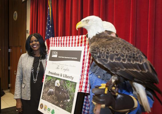 Chavonda Jacobs-Young, ARS Administrator, unveiling results of the newly named bald eaglets