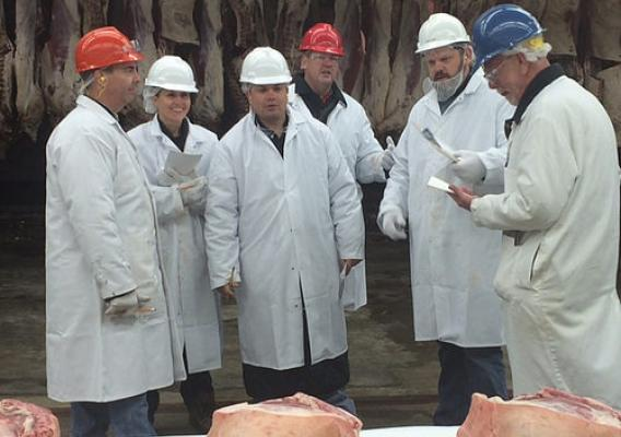 Meat graders discussing the meat in front of them