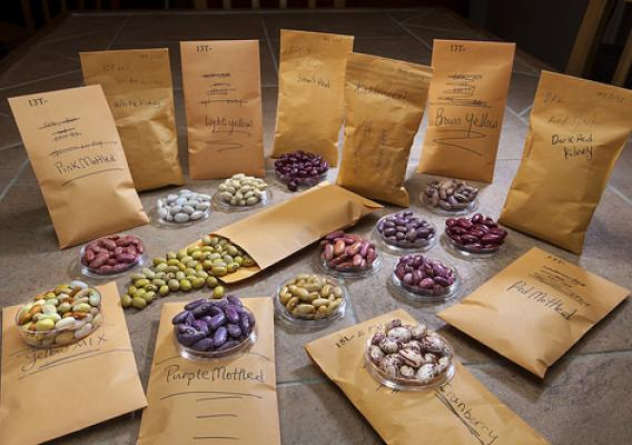 Packages of dry beans