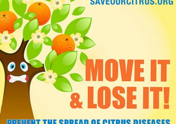 Help Save Our Citrus --  visit www.saveourcitrus.org or follow us on Facebook and Twitter.