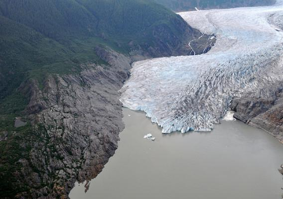 The massive Mendenhall Glacier in Alaska's Tongass National Forest is rapidly retreating. In this photo a developing forest can be seen above the glacier illustrating how the Mendenhall landscape is being dramatically altered by climate change. (Photo courtesy of The National Science Foundation, Durelle Scott)