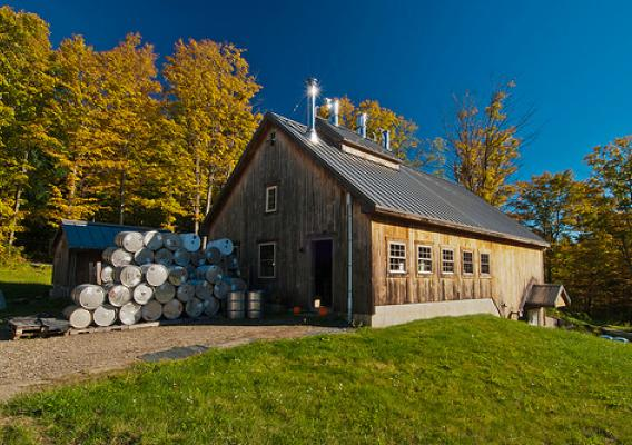 A maple syrup producer in Vermont (Photo courtesy USDA)