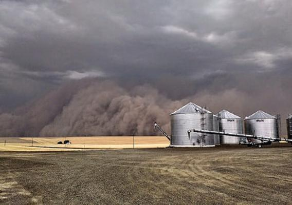 A powerful dust storm, known as a haboob, blankets a farm near Ritzville, Wash. Photo courtesy of Susan DeWald. Used with permission.