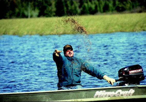 Seeding a lake with wild rice (photo provided by the Great Lakes Indian Fish and Wildlife Commission)