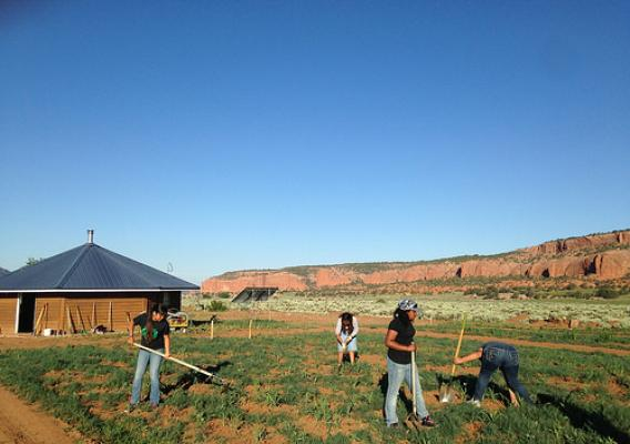2015 Safeguarding Natural Heritage Diné College summer youth students
