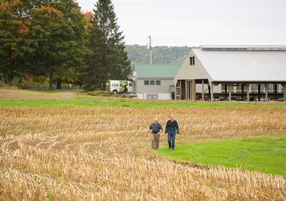 Producers surveying a field in the Northeast