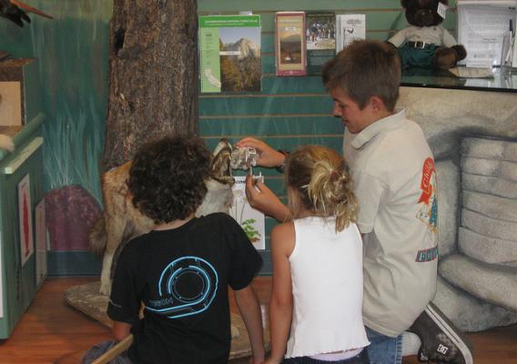 Connor Stack, a youth volunteer for the National Children's Forest in California, teaches other children about coyotes. Stack and other children help to operate the National Children's Forest, a collaboration between the San Bernardino National Forest and the National Forest Association. It is the oldest among four Children's Forests associated with the Forest Service. On April 4, the agency and the USDA announced plans to add nine Children's Forests to create a national network.