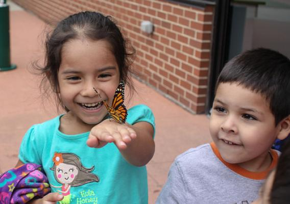 Children enjoying a Monarch Butterfly during a community event in Chicago