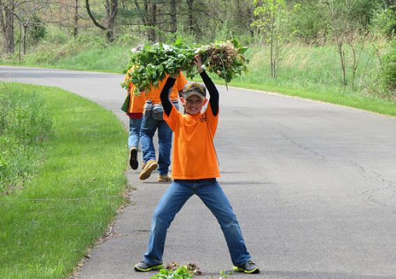A Petersburg (West Virginia) Elementary School student proudly displays his first garlic mustard haul. Volunteers are key to the removal of invasive species, such as the garlic mustard. (U.S. Forest Service)