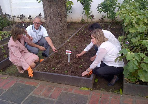First Lady Wilma Pastrana Jiménez and others plant seeds in People's Garden.